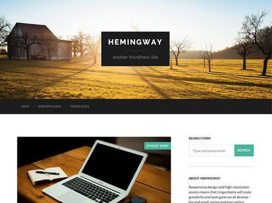 Hemingway Best free wordPress themes for  blogs